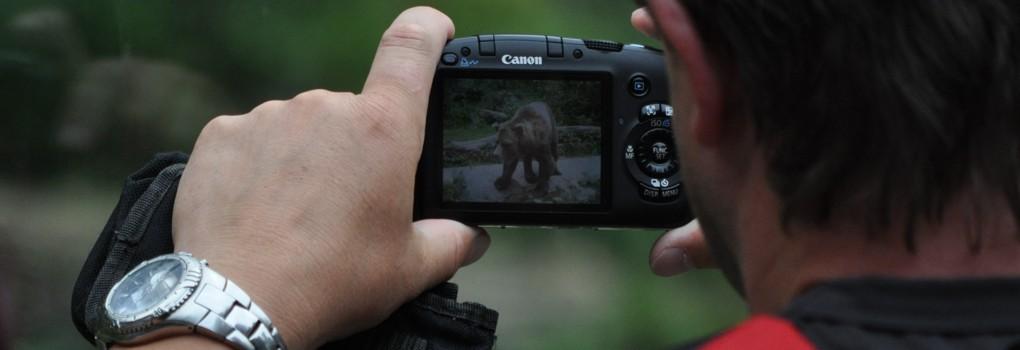 muž fotící medvěda