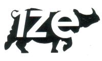Logo IZE